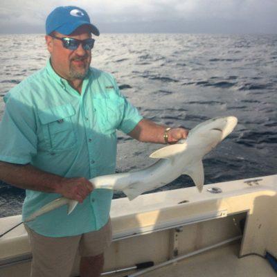 shark fishing trips naples florida 02